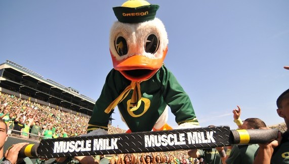 Ducks have been flexing their muscles at the next level