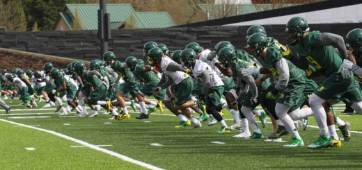 OREGON DUCKS 2014 SPRING