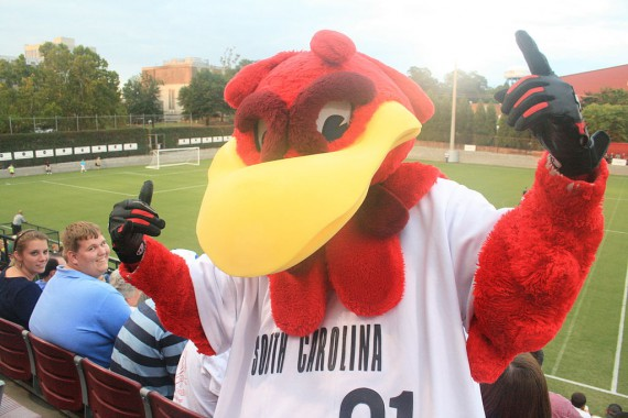 Cocky, South Carolina's mascot