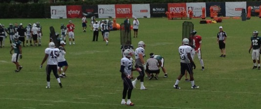 Bug men at the Eagles' training camp, 2013