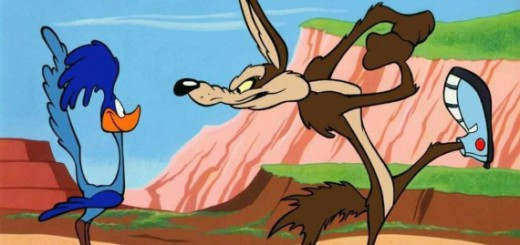 roadrunner-coyote-runner-shoes