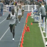 Cheserek cruises